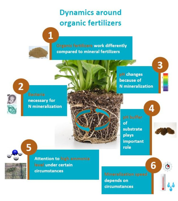 RHP organic fertilizers dynamic interactions attention points