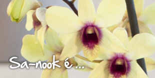 Sanook is... dendrobium